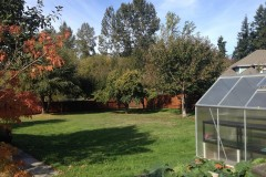 20-Kenmore-home-for-sale-backyard-5