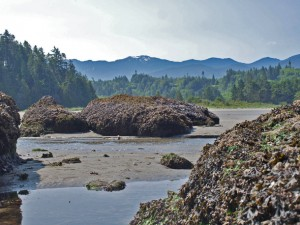 crescent-beach-olympic-mountains-5786