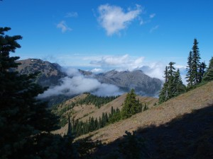 hurricane-ridge-view-north-43299