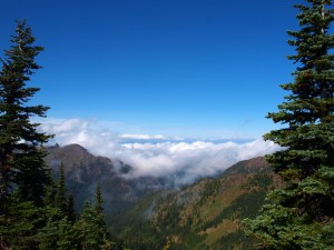 hurricane-ridge-view-west-43299