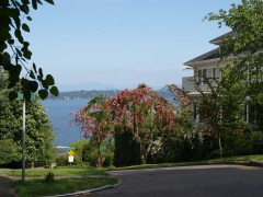 03-relocating-seattle-scenery