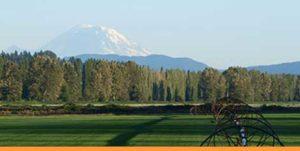 Seattle Real Estate News | Sammamish Valley & Mount Rainier