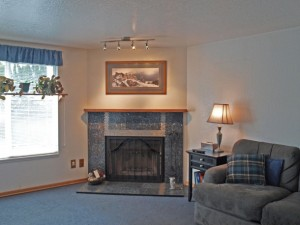 03-bothell-home-living-window-fireplace-couch-4967