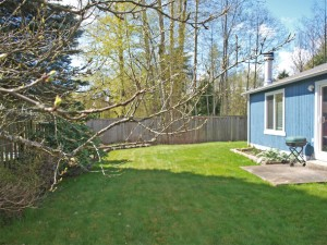 15-bothell-home-back-tree-westward-5040