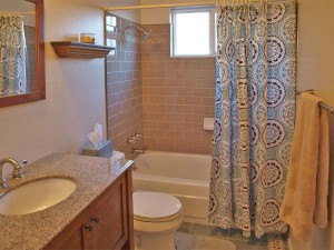 10-1-kirkland-home-for-sale-downstairs-bath-7478