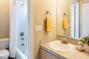 10-kirkland-condo-for-sale-master-bath