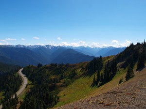 hurricane-ridge-view-southwest-43299