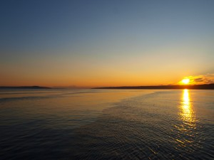 sunrise-rippled-water-65754