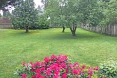21-snohomish-home-for-sale-backyard