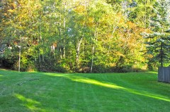 26-kirkland-home-for-sale-meadow